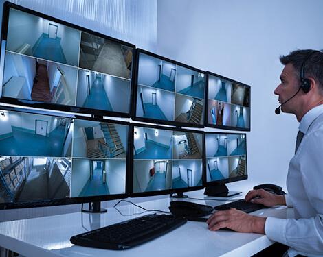 Cannabis Video Surveillance Systems
